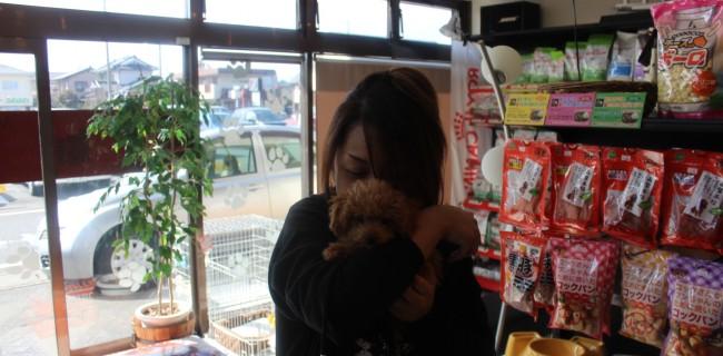 ショコラちゃんが、遊びに来てくれました(*^。^*)