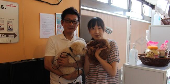 ティーカッププードルの女の子、2匹の新しいご家族が決まりましたぁ(●^o^●)