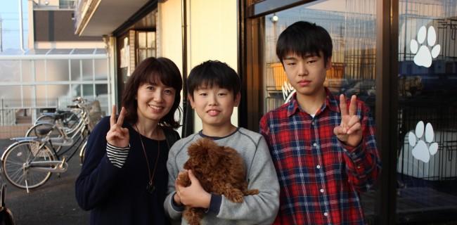 トイプードルの男の子、新しいご家族が決まりましたぁ(*^_^*)