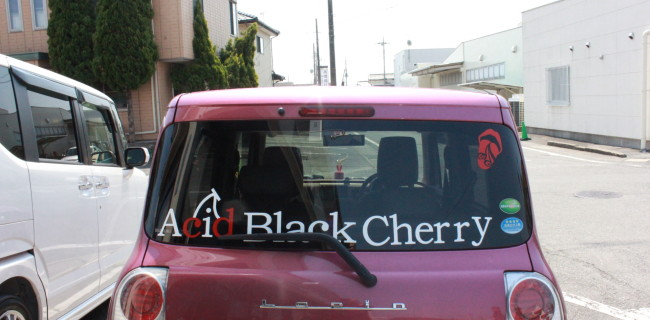 Acid Black Cherry🍒