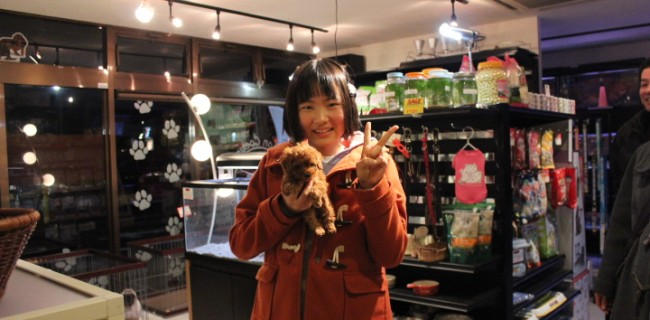 ティーカップサイズの女の子、飼い主様が決まりました(^o^)