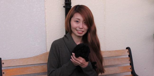 トイプードルの女の子、新しいご家族が決まりましたぁ(*^-^*)